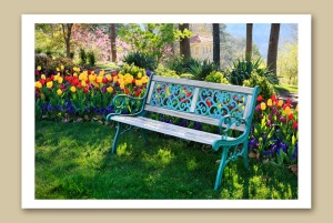 eureka springs crescent hotel bench in tulips