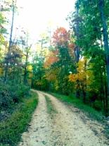 eureka springs trails