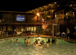 arkansas-hotel-swimmingwiththe-stars
